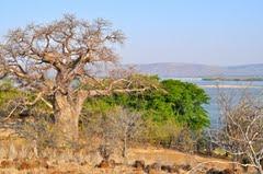Zambezi River, Tete Province