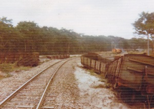 Newly repaired rails near Inhaminga 1974