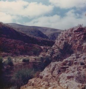 Kouga Valley
