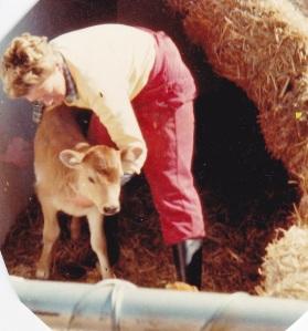 Prov-animalsSh&calf