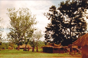 Chembe Banda's home near Petauke, Zambia