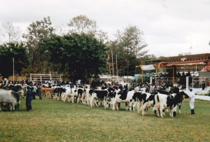Zambia 94Agric Show1