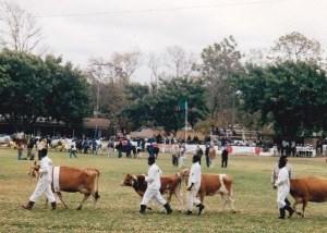 Zambia 94Agric Show2