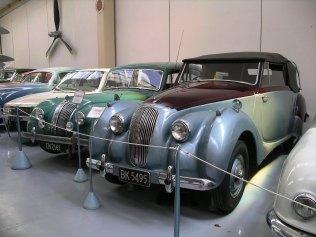 Para cars 3