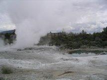 Rotarua geysers 2